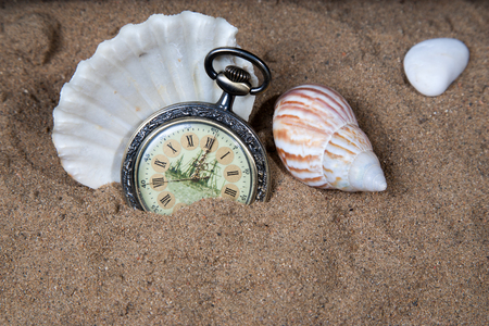 warm water fish: Pocket watch in the sand with seashells. Stock Photo