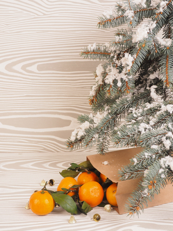 Orange tangerines near winter trees. Christmas mood.