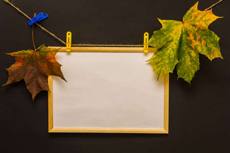 wooden photo frame hangs with clothespins on a rope on a black background, along the edges are two bright autumn maple leaves. Concept - template for text, postcards, lettering, place for drawing
