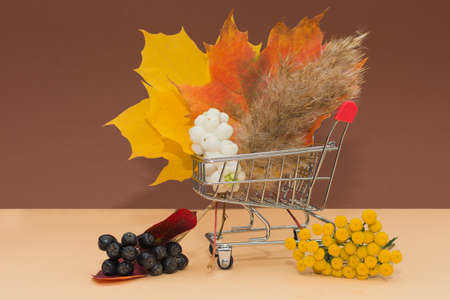 The shopping cart is full of bright autumn leaves, berries and fluffy dried flowers. Conception - autumn sales, delivery and purchase of any goods, online store.