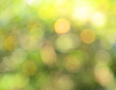 lambent: light bokeh green