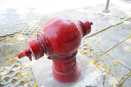 borne fontaine: bord de la chauss�e bouche d'incendie