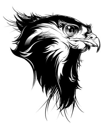 white bird: Hawk head