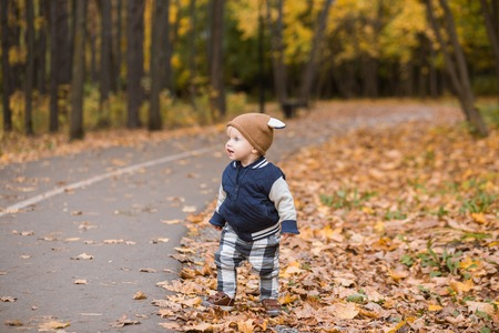 Beautiful baby boy one-year-old crawling, smiles and laughs in fallen leaves - autumn scene. Toddler have fun outdoor in autumn yellow park