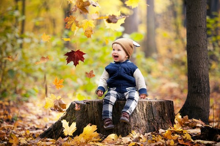 babyboy: Beautiful baby boy one years old crawling in fallen leaves - autumn scene. Toddler have fun outdoor in autumn yellow park