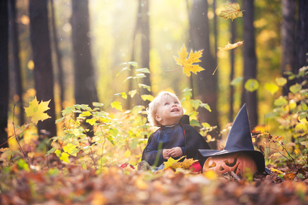 Halloween baby boy in dracula costume (cloak). Child in autumn forest looking at the falling leaves, smile and laughs. Halloween pumpkin, witch hat, holiday Jack-o-lantern concept