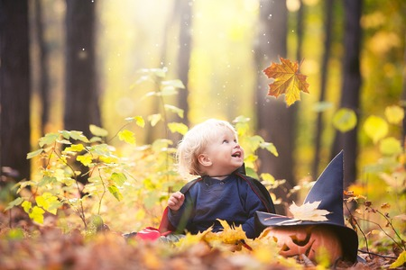 Halloween baby boy in dracula costume (cloak). Child in autumn forest looking at the falling leaves. Halloween pumpkin, witch hat, holiday concept