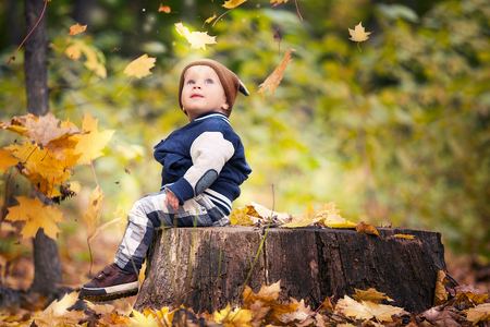 Beautiful baby boy one years old crawling in fallen leaves - autumn scene. Toddler have fun outdoor in autumn yellow park