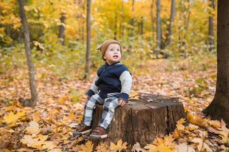 babyboy: Beautiful baby boy one-year-old crawling, smiles and laughs in fallen leaves - autumn scene. Toddler have fun outdoor in autumn yellow park