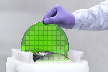 One of many silicon Wafer with semiconductors in plastic white storage box takes out by hand in gloves inside clean room.Green eco silicon wafers with glare. Stock Photo