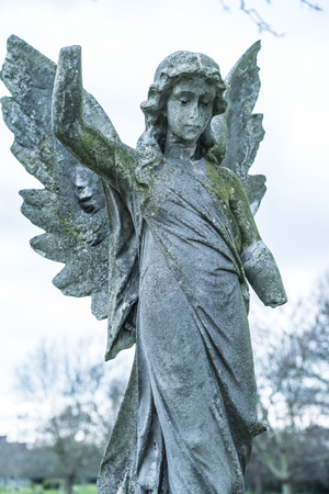 angel cemetery: Ancient stone angel statue on a cemetery