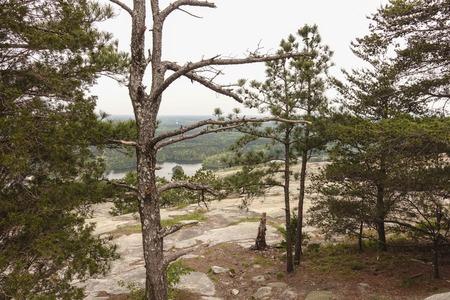 sone: On the Top of Sone Mountain Georgia