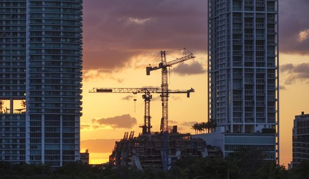sawgrass: Bulding cranes in the backlight of the evening sun