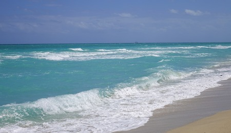 sawgrass: Ocean beach with turquoise water