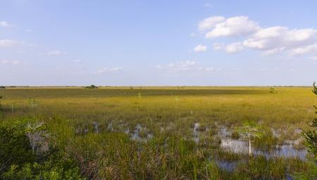Everglades national park: Everglades National Park in Florida Stock Photo