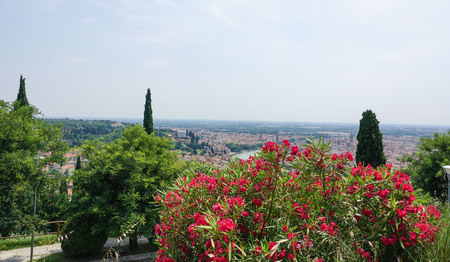 Beautiful Verona Italy - view from a hill