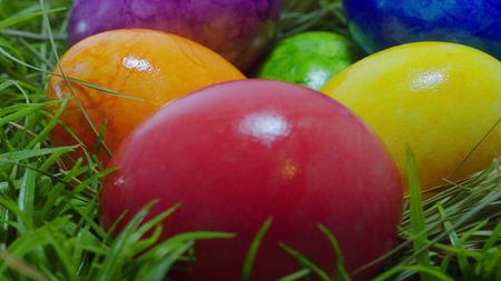 Happy Easter - colorful Easter Eggs in the grass Zdjęcie Seryjne