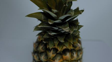 Moving studio sot of a pineapple