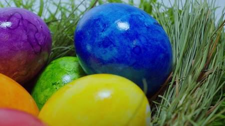 Colorful Easter Eggs in a nest Zdjęcie Seryjne
