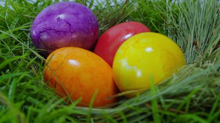 The Colors of Easter - a nest with Easter Eggs Stock Photo