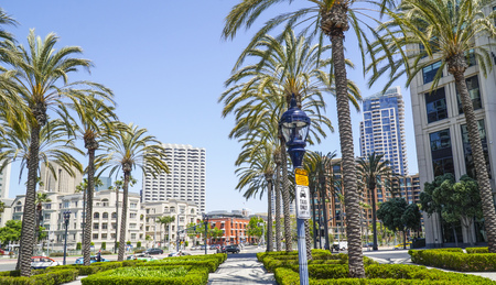 Beautiful palm trees in San Diego Downtown - SAN DIEGO - CALIFORNIA - APRIL 21, 2017