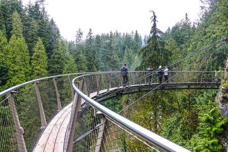 Walking trails throgh Capilano Bridge Park in the Canadian Woods - CAPILANO / CANADA - APRIL 12, 2017