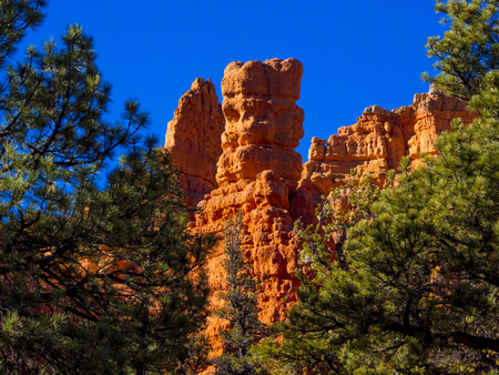 Amazing Scenery at Red Canyon in Utah on a sunny day Stock Photo