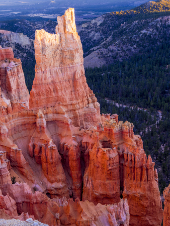 The red cliffs of Bryce Canyon National Park in Utah Stock Photo
