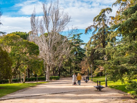 Beautiful West Park in Madrid called Parque del Oeste - MADRID  SPAIN - FEBRUARY 20, 2018