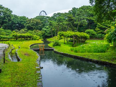 Japanese Garden in Korakuen Tokyo