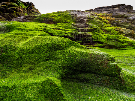 Beautiful waterfall over mossy stones in the Cove of Tintagel in Cornwall 写真素材