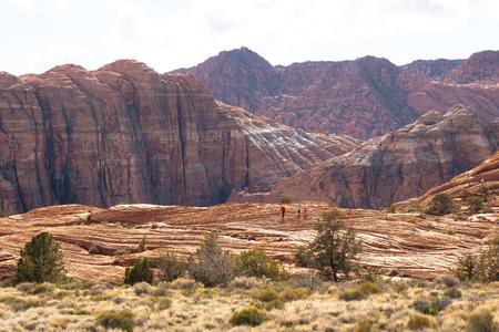 Snow Canyon in Utah - wunderschöne Landschaft Standard-Bild