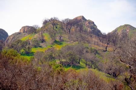 Malibu Creek State Park in California