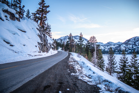 Road through Inyo National Forest in winter