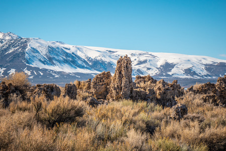 Tufa towers columns of limestone at Mono Lake 免版税图像