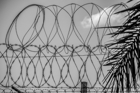 Barbwire fence at the Mexican Border