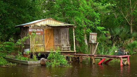 Wooden hut in the swamps - travel photography