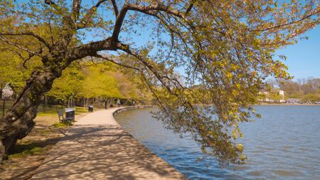 Wonderful walkways around Tidal Basin in Washington DC - travel photography Imagens
