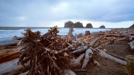 La Push - the famous beach at the Quileute Reservation - travel photography