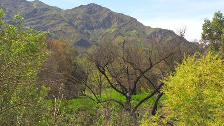 Malibu Creek State Park in California
