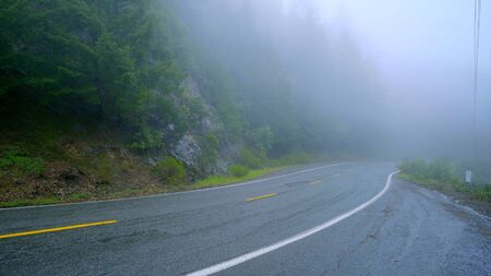 Lonesome road in the mist leading through the Redwoods National Park - travel photography Stock fotó