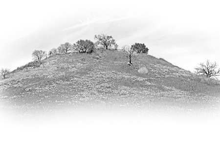 Malibu Creek State Park in California Standard-Bild