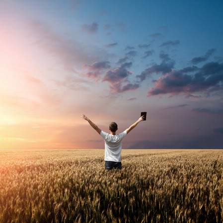 bible: man holding up Bible in a wheat field