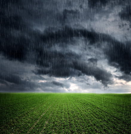 rain weather: Dark storm clouds over meadow with green grass