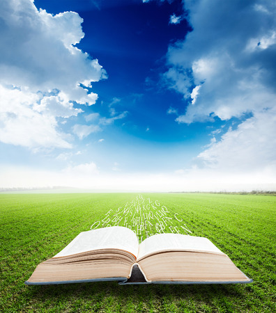 open book with magic flying letters on field background