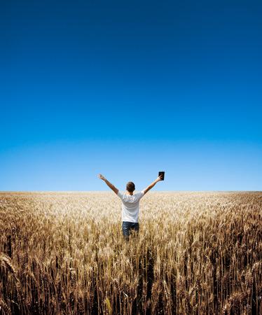 man houdt Bijbel in een tarweveld Stockfoto