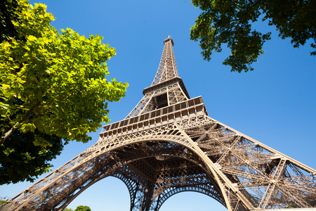 Eiffel tower with trees Zdjęcie Seryjne