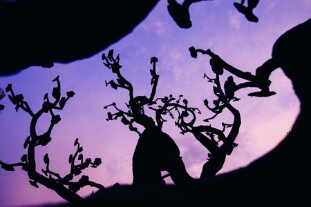 Abstract tree over a dark sky Stock Photo