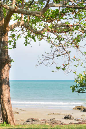 Tropical beach with green trees, seaview.
