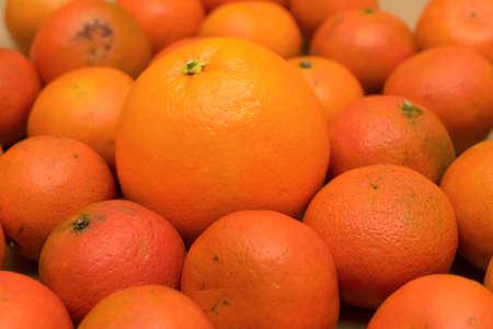 a large fresh orange lies among the small spoiled mandarins